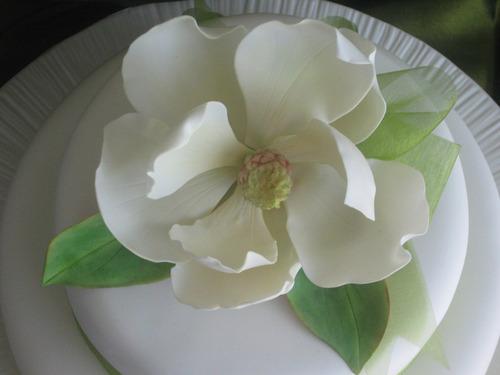 magnolia grandiflora flores arvores sementes para mudas