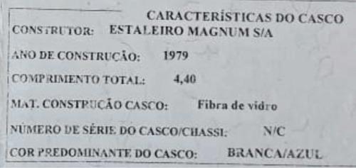 magnum mercury