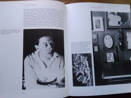 malcolm haslam - the real world of the surrealists