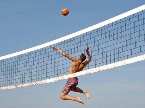 Malla Para Cancha Volleyball Profesional Inmunizada Oficial