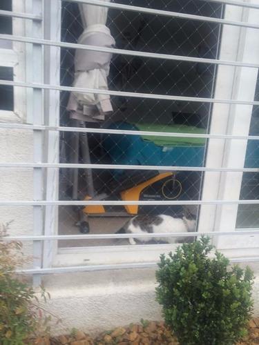 mallas de seguridad niños,ancianos y mascotas (safeterrace)