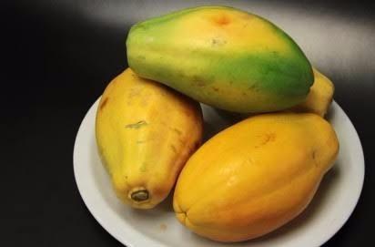 mamão anão do amazonas papaya -50 sementes frutas mudas vaso