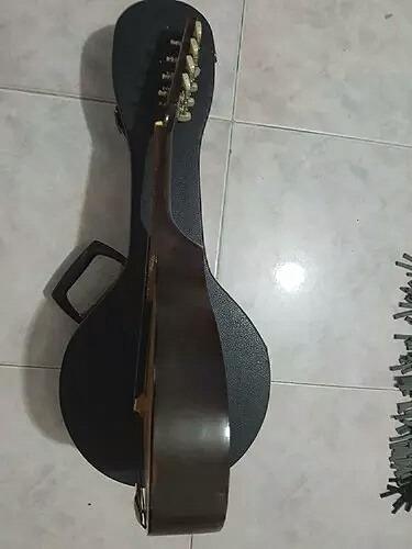 mandolina italiana profesional con estuche duro impecable