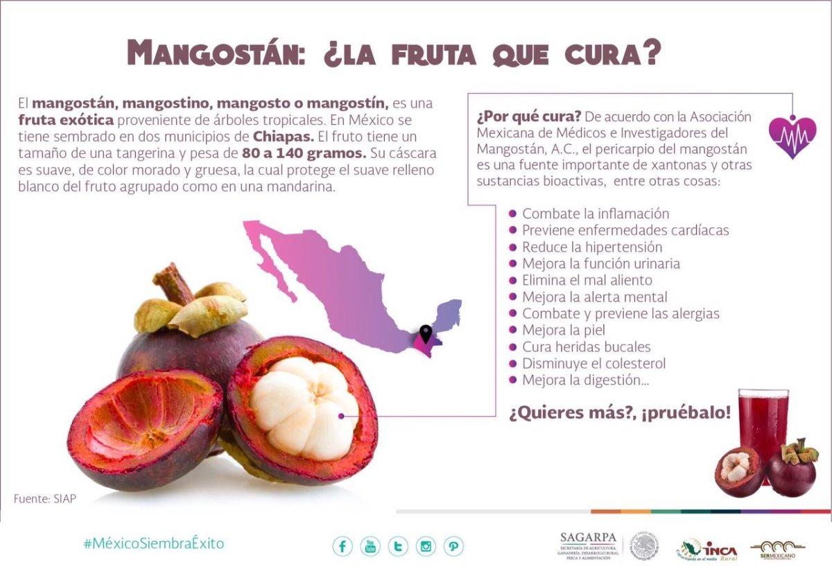 Mangostan, Pericarpio Deshidratado - $ 550.00 en Mercado Libre