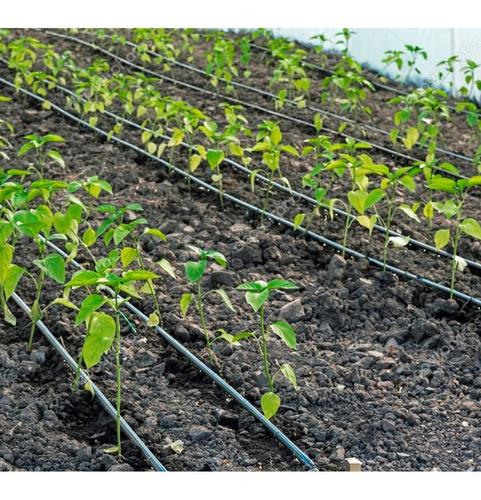 mangueira de irrigação gotejamento 200m 50x50cm