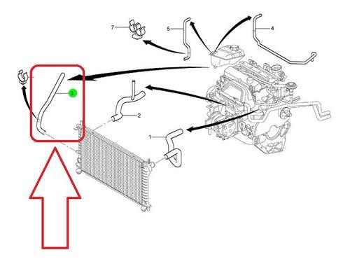 mangueira reservatorio ao radiador c/ar focus 00-05 1.8 2.0*
