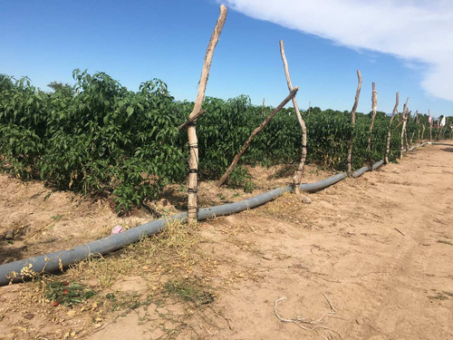 manguera plana agricola 4¨ sustituto de layflat riego goteo