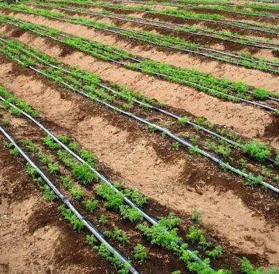 mangueras de riego agricola