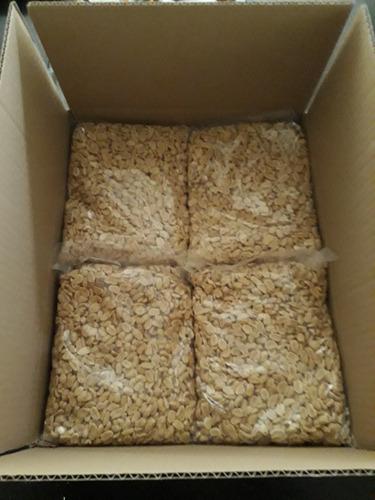 mani tostado sin sal caja 12 kg x $23.500 envio gratis stgo.