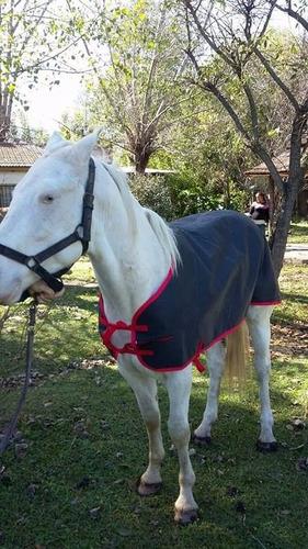 manta para caballo talle grande