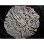 Centro De Mesa (pañito) Crochet