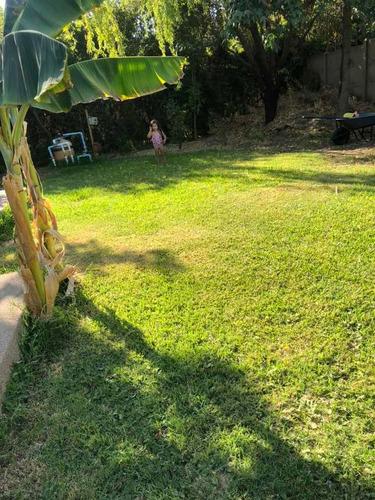 mantencion de áreas verdes