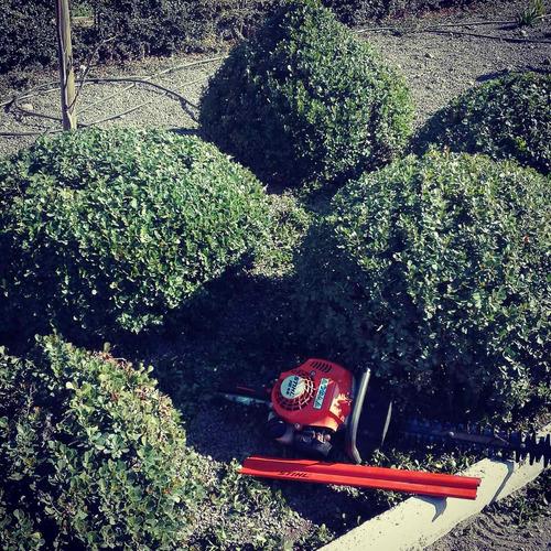 mantención jardines,