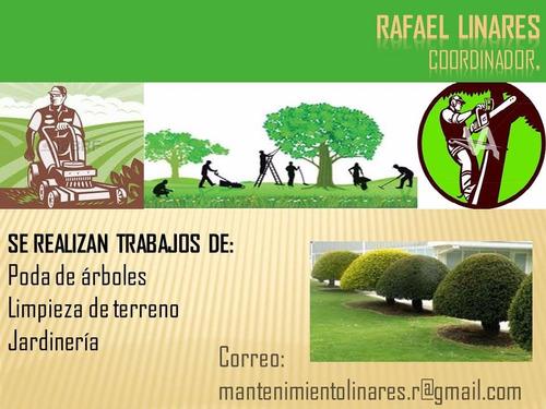 mantenimiento de áreas verdes