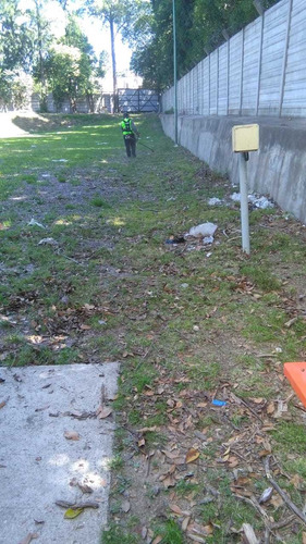 mantenimiento de espacios verdes - yuyito