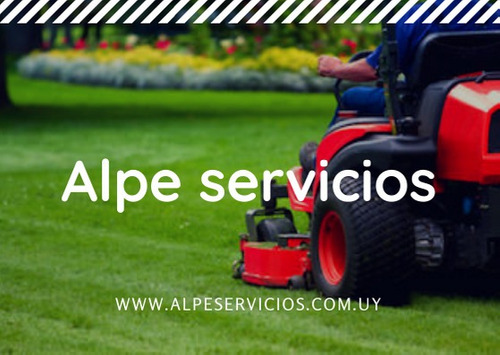 mantenimiento de jardines, limpieza  de terrenos