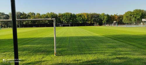mantenimiento integral de espacios verdes y césped deportivo