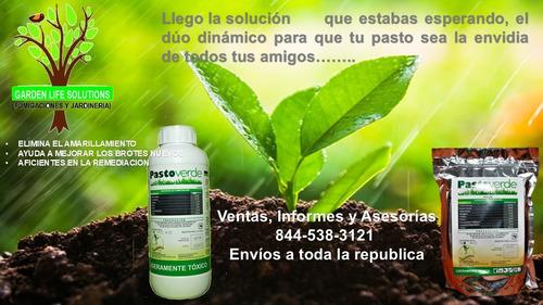 mantenimiento y recuperacion de areas verdes/fumigacion.