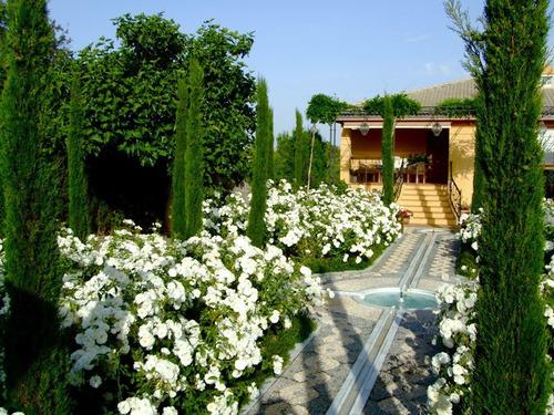 mantenimiento,de,parques jardineria limpieza de terrenos