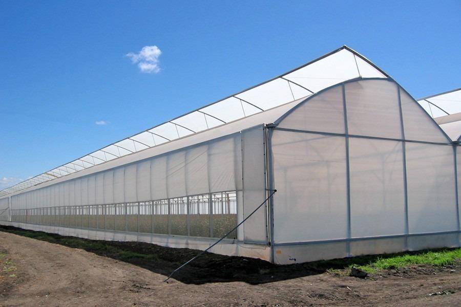 Manual construcci n de invernaderos o casa cultivos bs en mercado libre - Invernaderos para casa ...