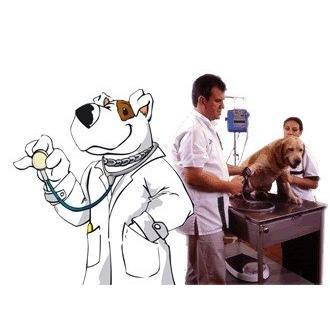 manual de ayudante de veterinaria
