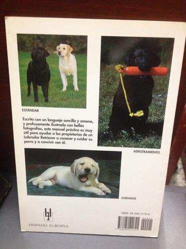 manual de labrador retriever
