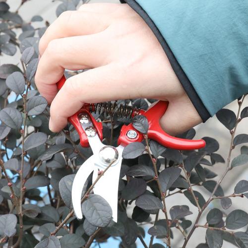 manual de tesoura jardinagem alto exatidão multifuncional
