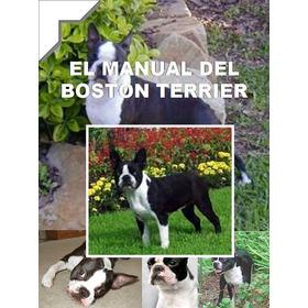 Manual Del Boston Terrier Mas Regalos Conoce A Tu Amigo Au1