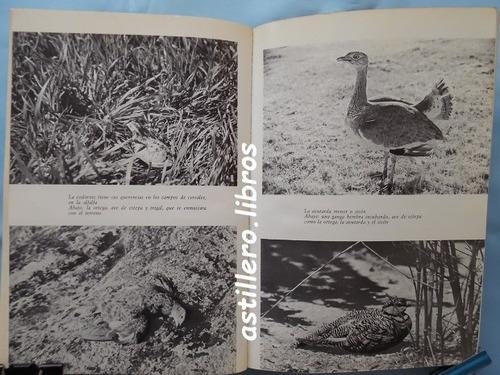 manual del cazador- mundet & brighenti- ed. de vecchi