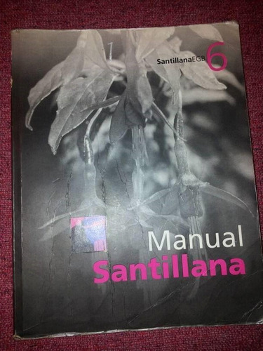manual santillana - egb 6