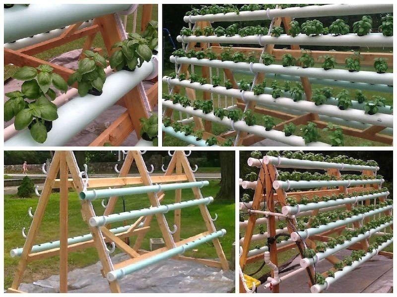 Manuales Cultivos En Hidroponia Para Balcon Jardin Terrazas