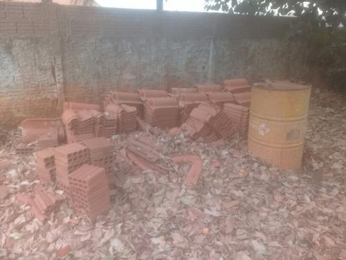 manutenção em terrenos e chacaras, reflorestamento