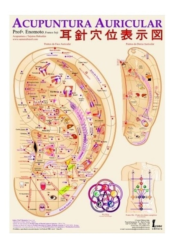 Mapa Acupuntura Auricular - Prof Jóji Enómoto - R$ 39,99 em Mercado Livre