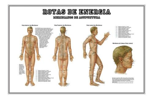 mapa grande hd 65x100cm meridianos e pontos de acupuntura