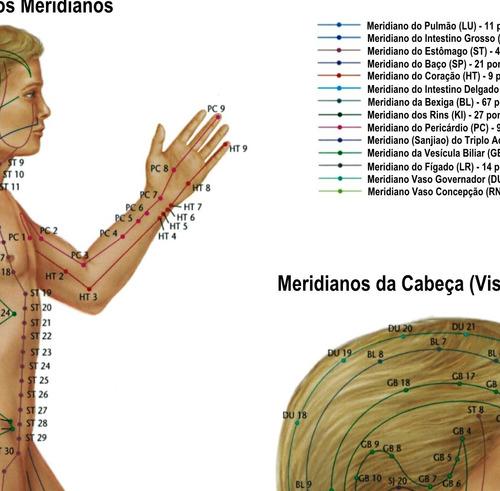 mapa hd 65x100cm decorar clínica meridianos e acupontos