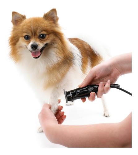 maquina peluquería mascotas