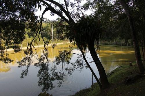maravilhosa chácara em juquitiba com lago e casa de madeira