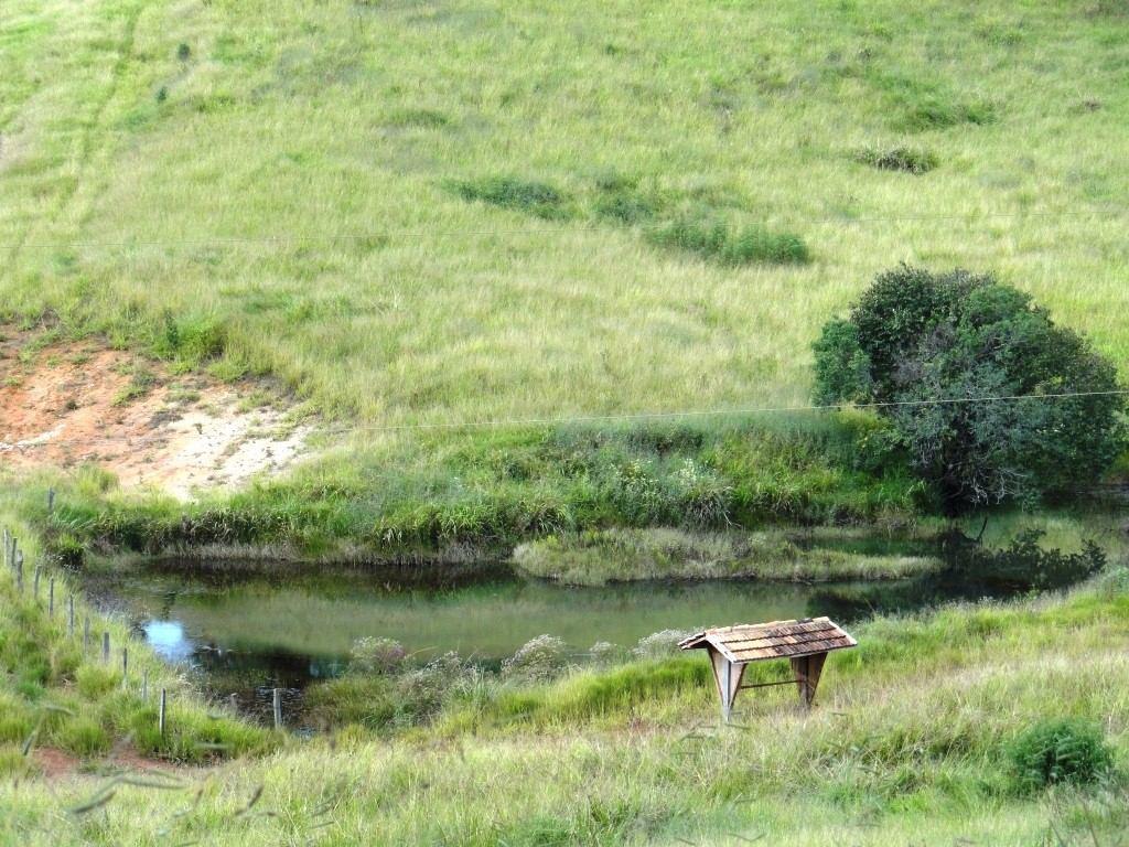 maravilhosa fazenda são gonçalo do sapucaí - sul de minas