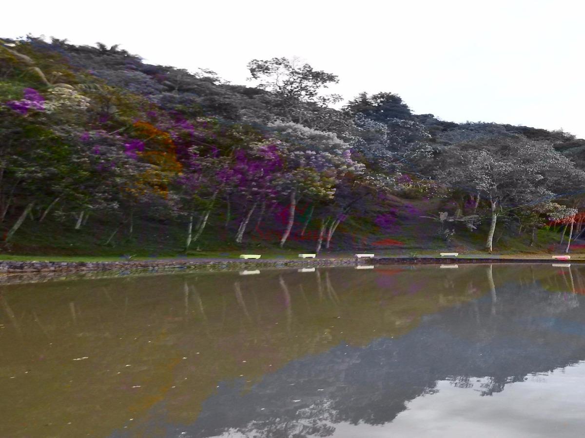 maravilhosa sítio com grande lago  repleto de peixes