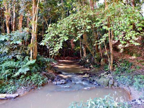 maravilhoso sítio com 66.000 m² cachoeira e 2 lagos