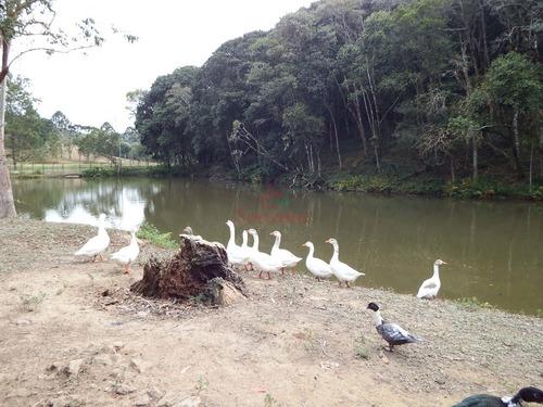 maravilhoso sítio com grande lago espaço para plantação