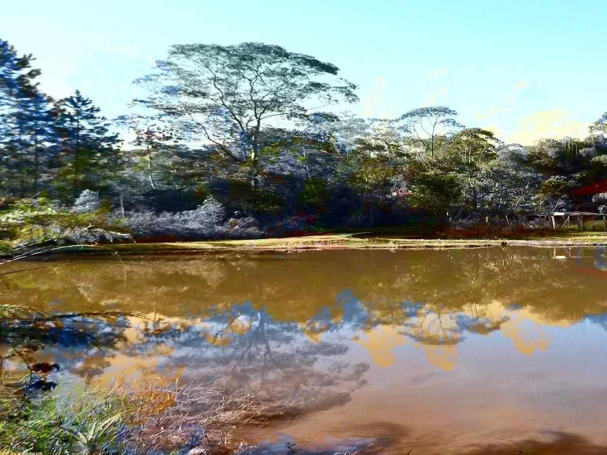 maravilhoso sítio rico em água e bem localizado