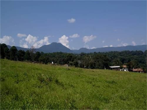 maravilloso terreno con vista al bosque y montañas.