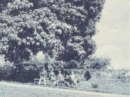 marc ferrez - mangueira 08121415