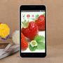 Teléfono X-bo V10 Dual-core Androide 4.4.2 Wcdma 5.5