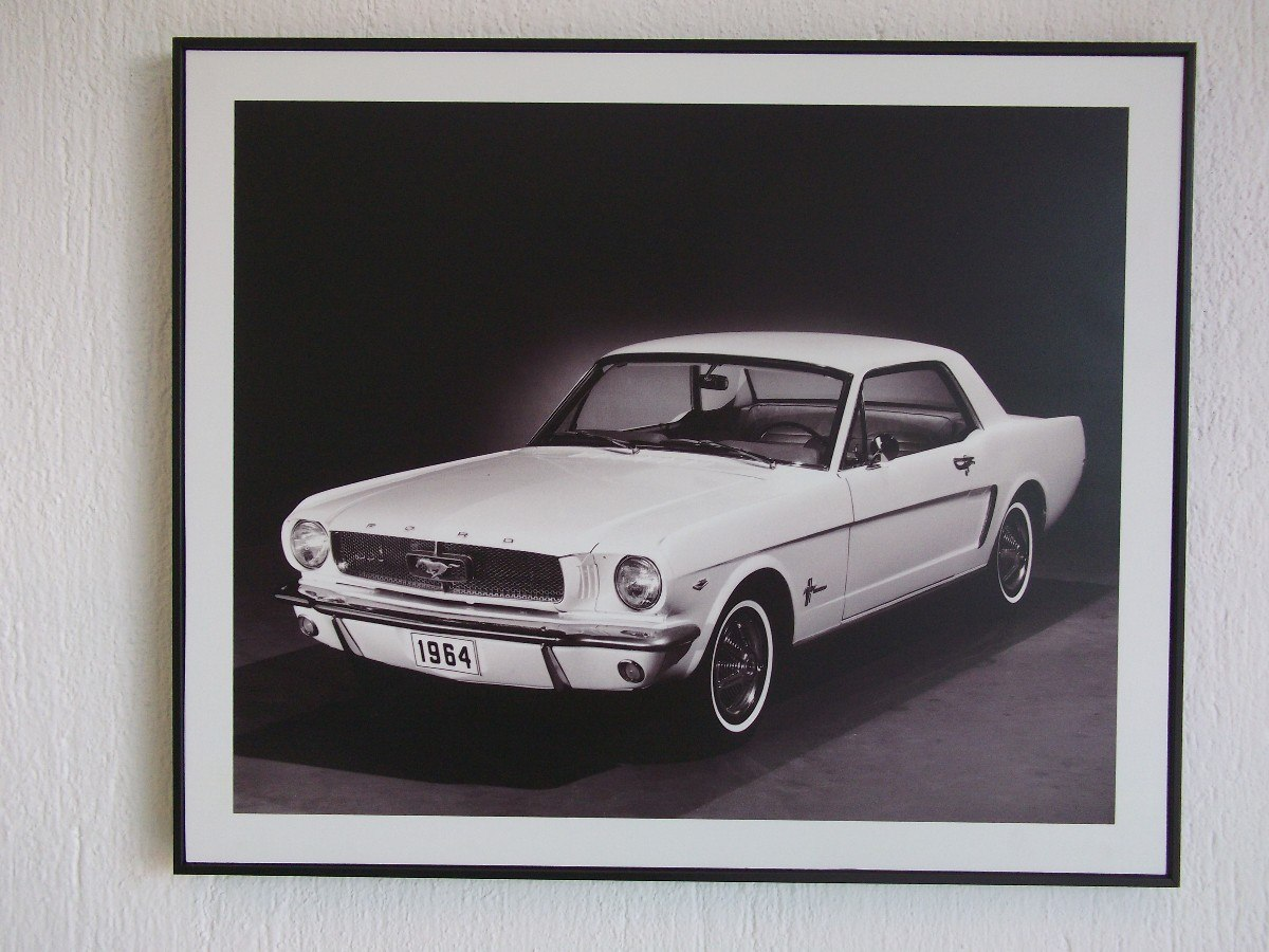 Excelente Marco De Mustang Imágenes - Ideas Personalizadas de Marco ...