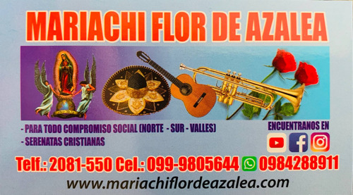 mariachi flor de azalea quito-ecuador
