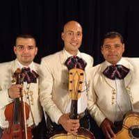 mariachi juvenil internacional