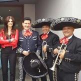 mariachis shows mexicanos los mejores y autenticos en bs as