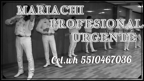 mariachis urgentes mariachi cdmx 5510467036 teléfono 24 hras